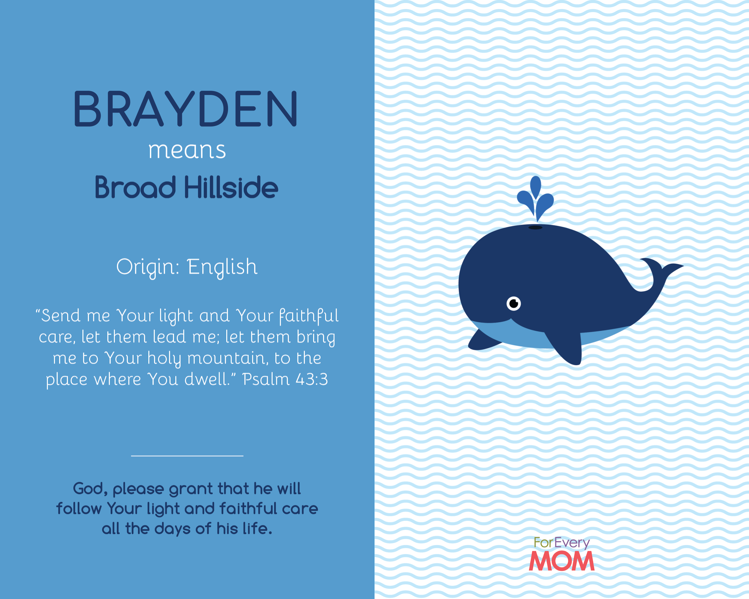 baby boy name Brayden