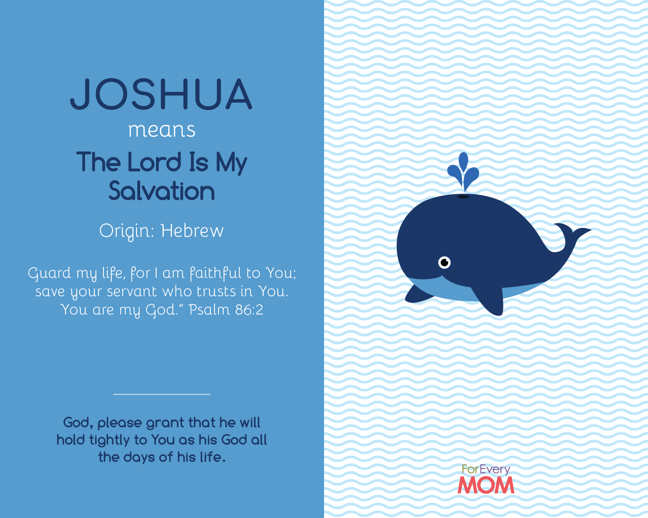 baby boy name Joshua