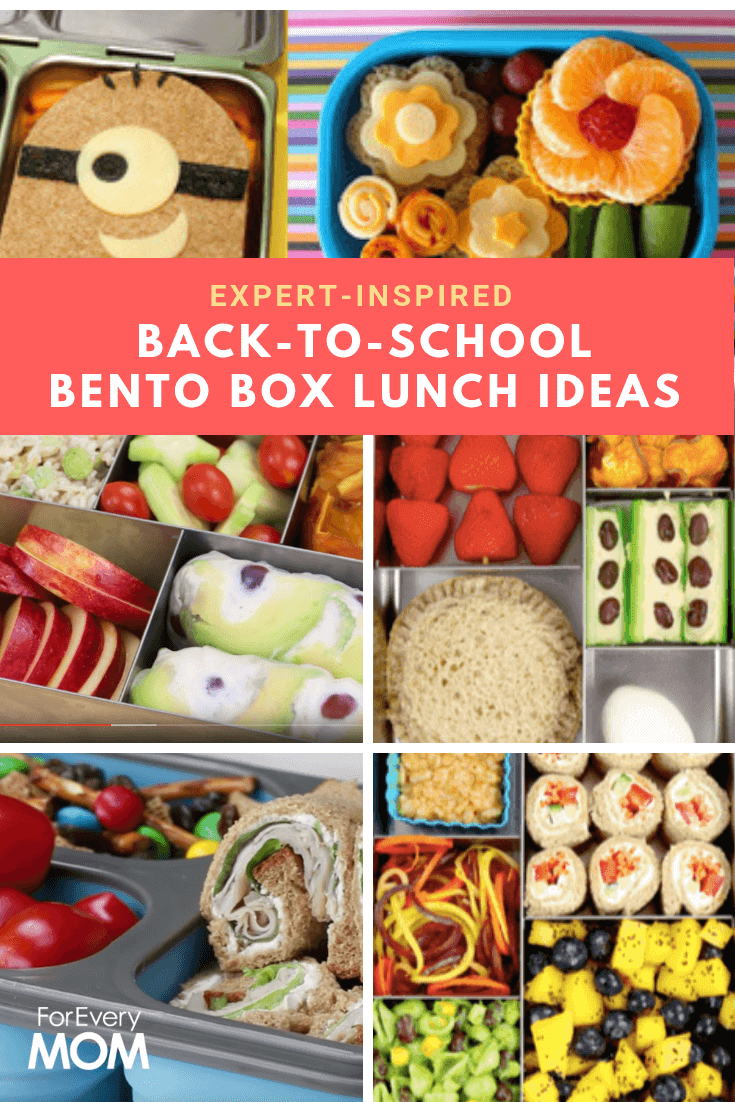 Kiss Ziplock baggies goodbye, and kick this school year off right with these expert-inspired bento box lunch ideas that'll make back to school a breeze!